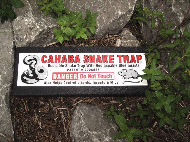 Lizards, insects, Mice and snakes trap warning