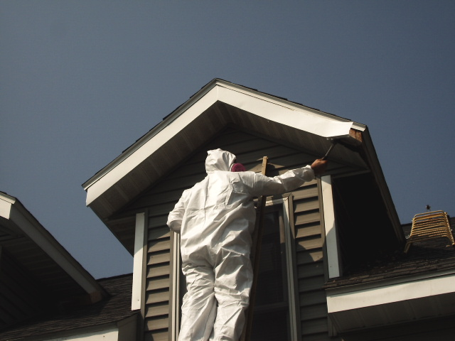 Worker exterminating a wasp nest